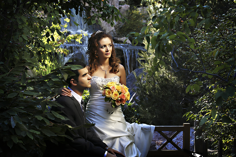 The Staff At Albuquerque Botanical Gardens Is Amazing And So Helpful We Are Wedding Photography Studio Love New Mexico Weddings